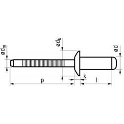 Popnagel RVS/RVS 1051 4,8X8mm 500