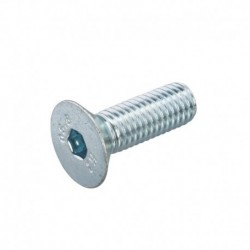 Inbusbout Pk M6x20mm Staal...