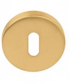 BASICS LBN50D sleutelplaatje 10mm dik PVD mat goud
