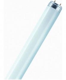 Osram tl-buis 36w 1200mm kl41(827)(82)