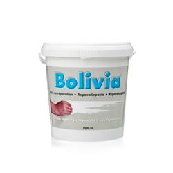 Bolivia Reparatie Pasta...
